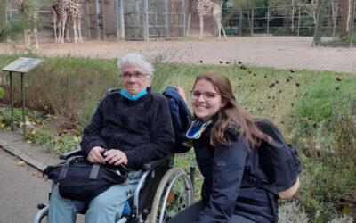 Den grauen Riesen im Kölner Zoo ganz nah…
